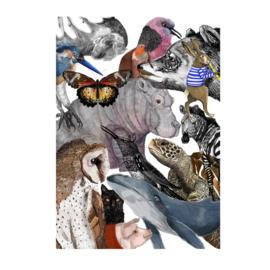 dieren collectie (29x40cm)