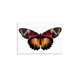 postkaart vlinder