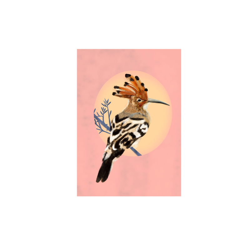 postkaart hopvogel
