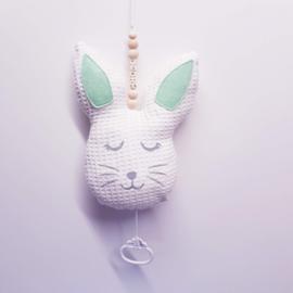 Muziekdoos konijn met naam