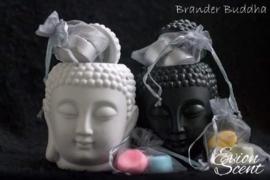 Brander Buddha Groot
