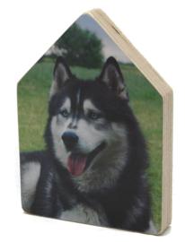 Foto op houten huisje