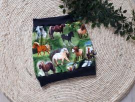 rokje horses