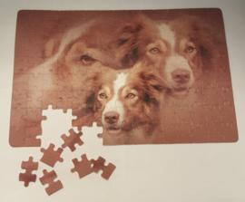 Puzzel 29x19 cm met foto