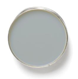 Amazona Colourwax® Blauwgrijs 250 ml.