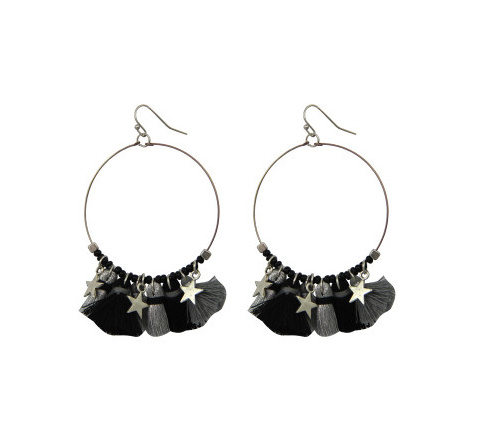 Tassel and Star Earrings
