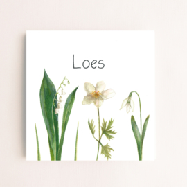 Flowers 006