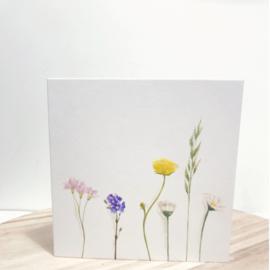 Veldbloemen - kunstkaarten - set 6 stuks