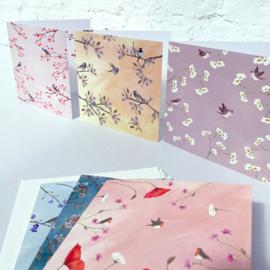 Birdy wenskaarten, set van 6 kaarten incl. envelop