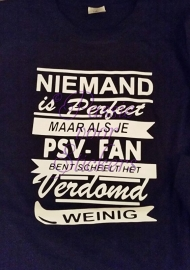 Niemand is perfect (voetbalfan)