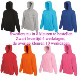 Sweaters in 8 kleuren