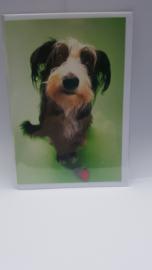 Kaart hond met bal