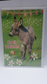Kaart ezel verjaardagskaart