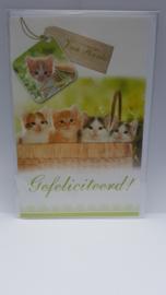 Kaart kittens verjaardagskaart