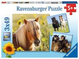 Ravensburger puzzel Schattige ponys