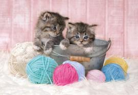 Puzzel kittens 104 stukjes