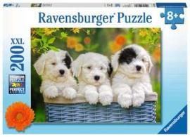 Ravensburger puzzel Schattige puppies
