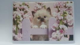 Kaart kitten met roze bloemen