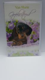 Kaart teckel verjaardagskaart