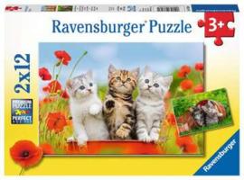 Ravensburger puzzel Katjes op ontdekkingsreis