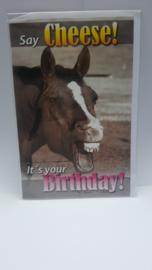 Kaart paard verjaardagskaart