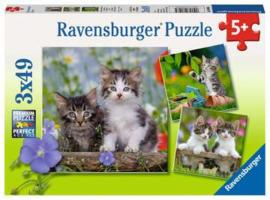 Ravensburger puzzel katten
