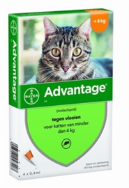 Advantage kat tot 4kg 4 piepeten