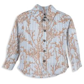MORLEY overhemd