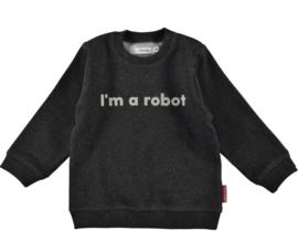FILOU&FRIENDS sweater - grijs