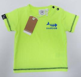 BAMPIDANO t-shirt