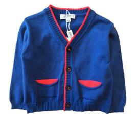 ALETTA vest - blauw