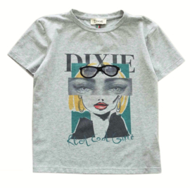 DIXIE t-shirt - grijs