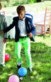 TERRE BLEUE broek - groen