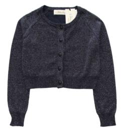 BLUE BAY vest met lurex - blauw