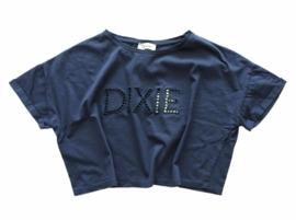 DIXIE oversized t-shirt - blauw