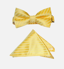 LES GAMINS CERIMONIA vlinderdas + pochet - geel