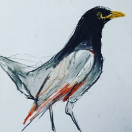 Natuur ( tekentechniek - pastel)