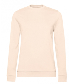 Pastel basic sweater (adults)