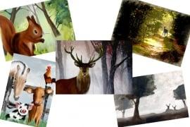 Pakketje van 5 ansichtkaarten Veluwe