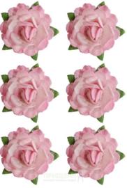 Tea Roses ScrapBerry's