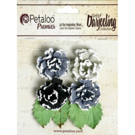 Frosted Roses Grey/Black Petaloo