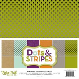 Back Foil Dots Collection Kit 12x12 - Echo Park