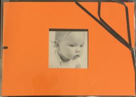Mini Album Orange 1 5x7 - DCWV