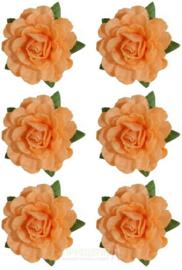 Tea Roses Peach ScrapBerry's