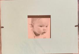 Mini Album Robin 5x7 - DCWV