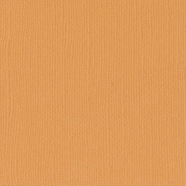 Apricot 12x12 - Florence