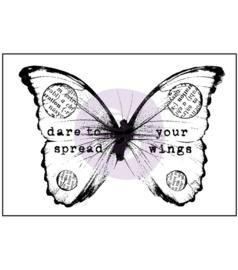 Finnabair Butterfly 1