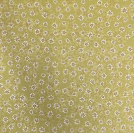 Olive Nook Blossoms - Chatterbox