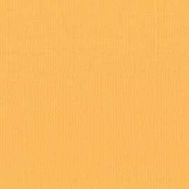 Mango 12x12 - Florence