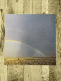 Rainbow Right - Wubie Prints